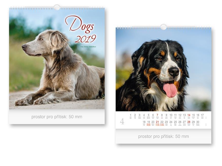 Kalendár 2019 nástenný malý Dogs