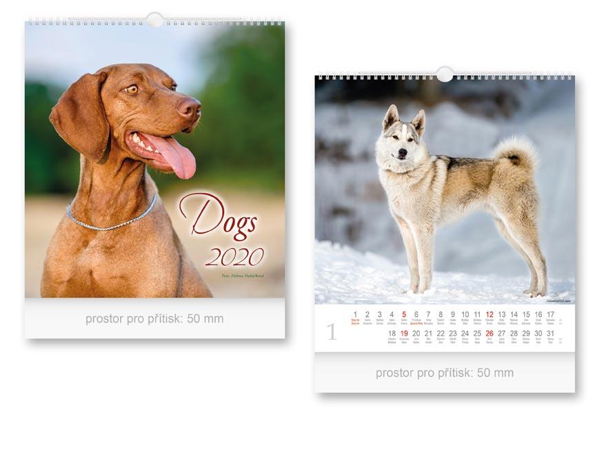 Kalendár 2020 nástenný malý Dogs