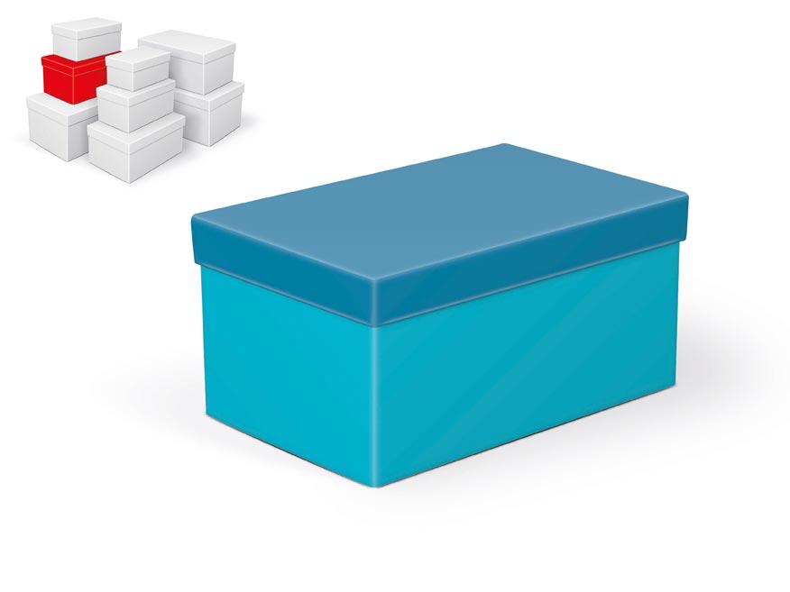 krabička darčeková B-C003-D 22x14x11cm 5370797