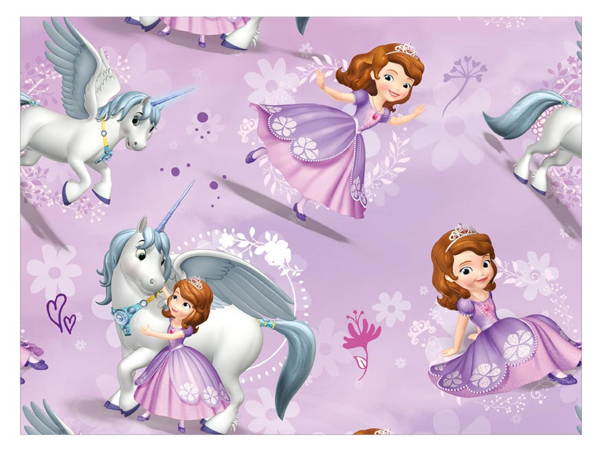 Baliaci papier Disney Y043 (Sofia the First) 100x70 LUX
