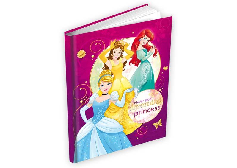 Pamätník MFP Disney Princess (140x190mm)