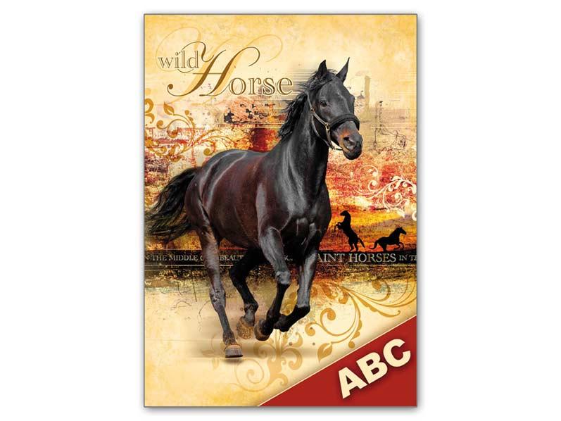 Dosky na ABC MFP Kôň 40