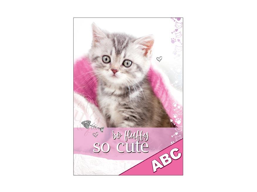 Dosky na ABC MFP Mačka